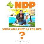 NDP copy